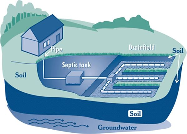 Shoreline Septic System diagram