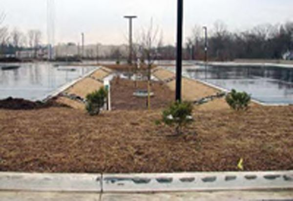 Meadow planting near storm water retention wells